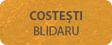 Costesti Blidaru